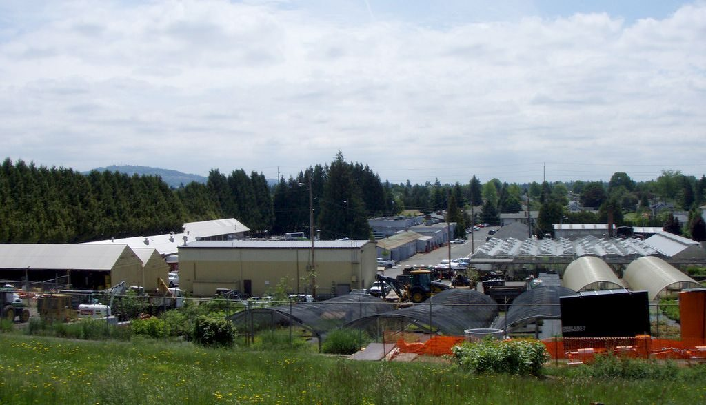 Nursery buildings, with a grassy slope of Mt. Tabor in the foreground, and trees and hills to the south in the background.